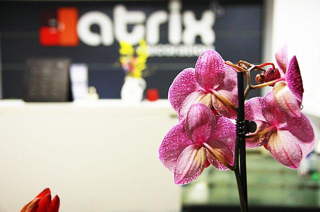 Mobila Atrix Decoration